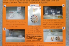 lernfirma-chemie-006